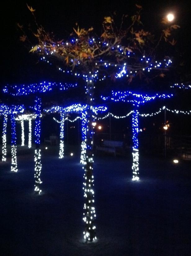 Twickenham Christmas Lights 2012 Jubilee