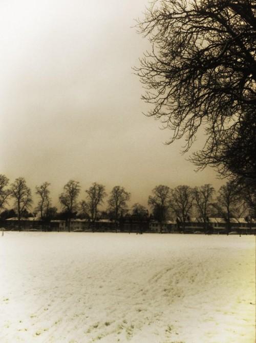 Twickenham Green in snow (c Francesca Pessoa)