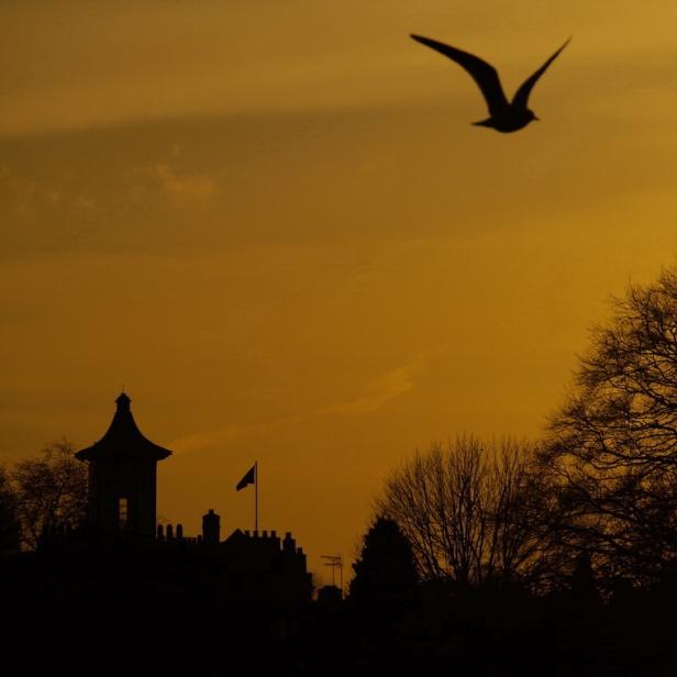 Radnor House Sunset, Twickenham