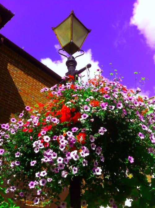 flowers in church street