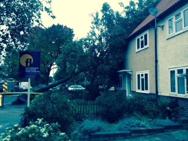 Storm Damage, Twickenham [copyright @liam_tebb]