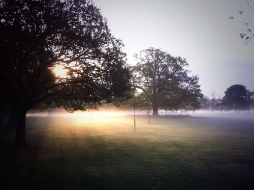 Misty April Morning, Marble Hill Park