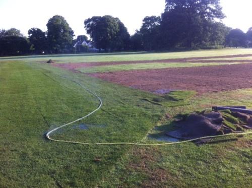 Sprinklers & turf, Marble Hill Park