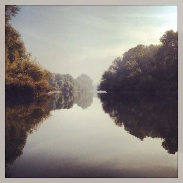 Morning by the river at Twickenham [copyright: Michele Whitby]